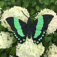 groene tropische vlinder, Papilio palinurus